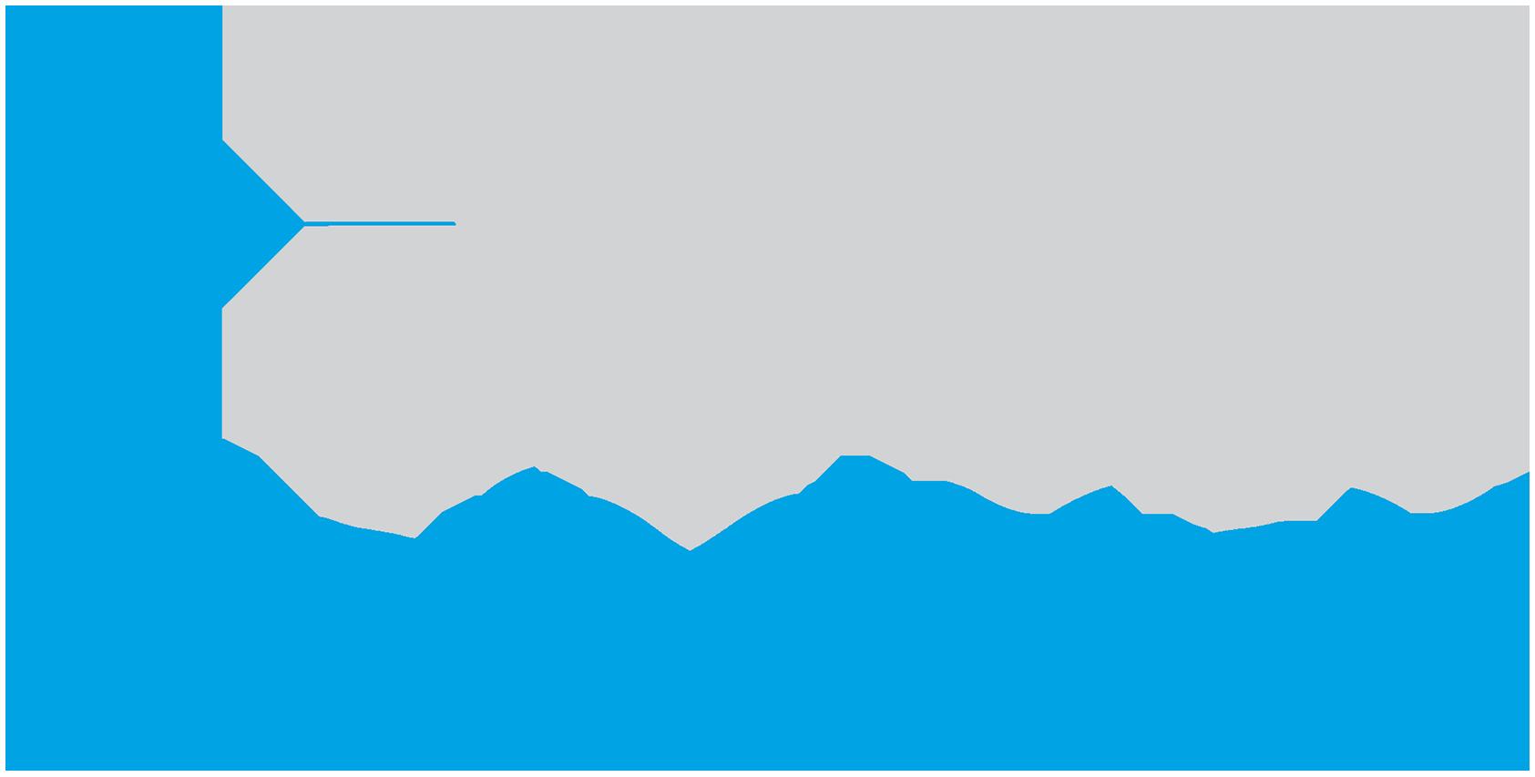XTM International