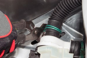 Release the washer drain hose clamp.