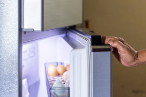 How to replace a door gasket in a top-freezer refrigerator