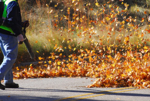 6 easy steps for maintaining a leaf blower.