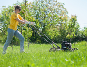 From standard to specialty blades, there are many options when it comes to blades for your walk-behind lawn mower.