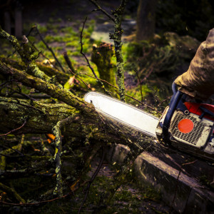 Chainsaw care and troubleshooting tips