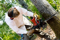 How to prevent chainsaw injuries