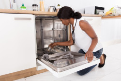 Easy DIY dishwasher repairs