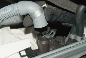 PHOTO: Reconnect the drain hose to the pump body.