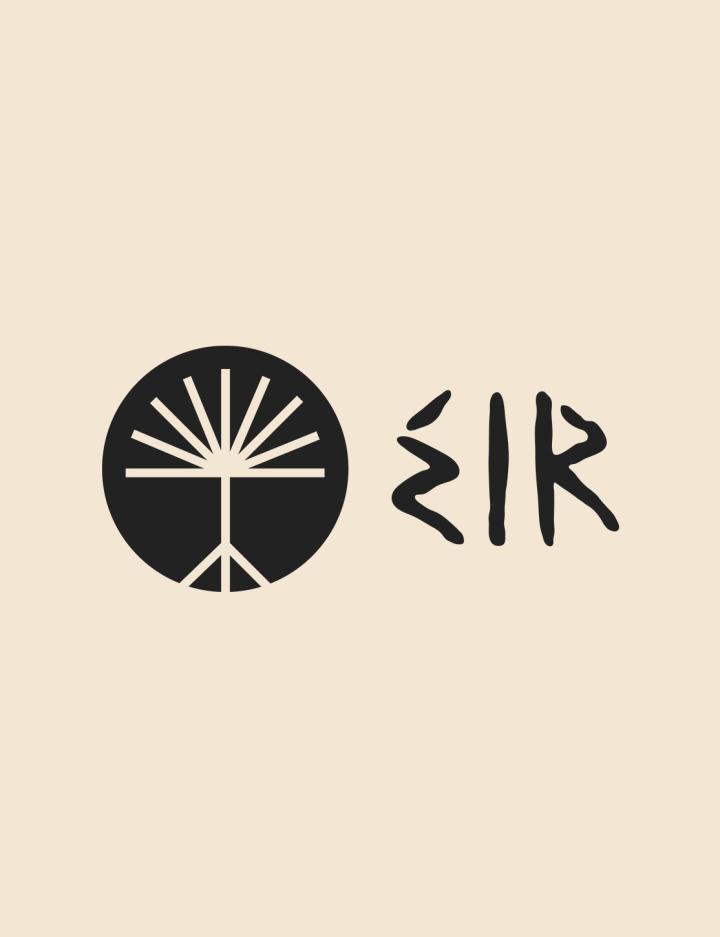 Eir - Insight image