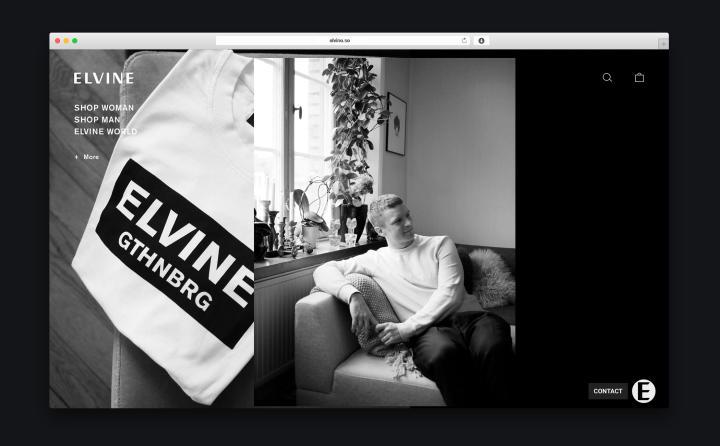 Elvine - Image 2