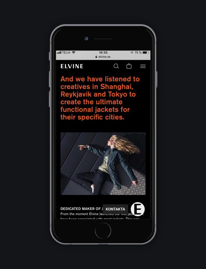 Elvine - Idea image