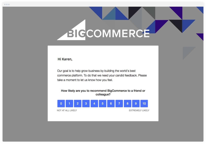 Net Promoter Score Survey Example