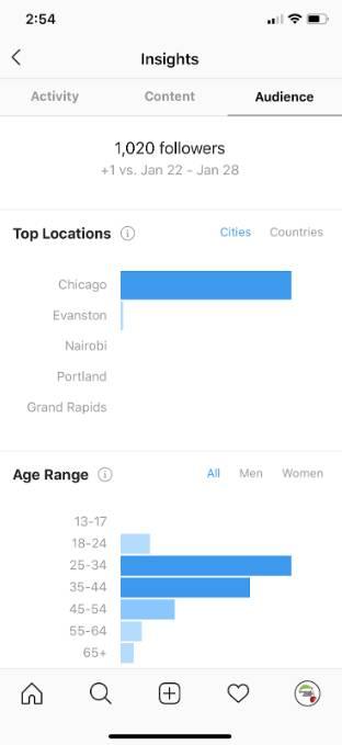 Audience Research Methods - instagram analytics