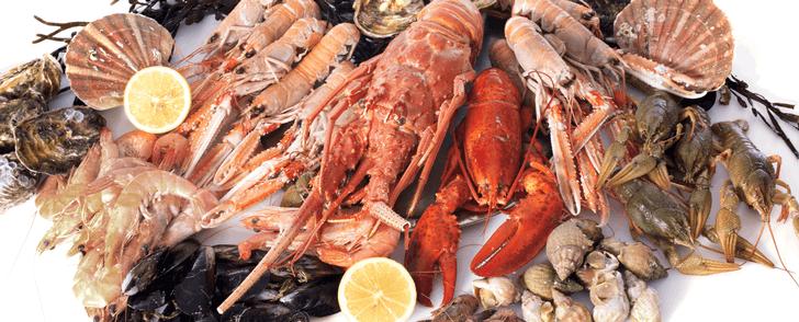 Därför kan skaldjur hjälpa dig ner i vikt