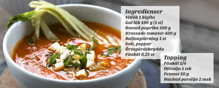 Tips på middag: Recept på vegetarisk soppa