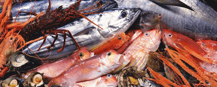 Kaloritabell: Fisk och skaldjur
