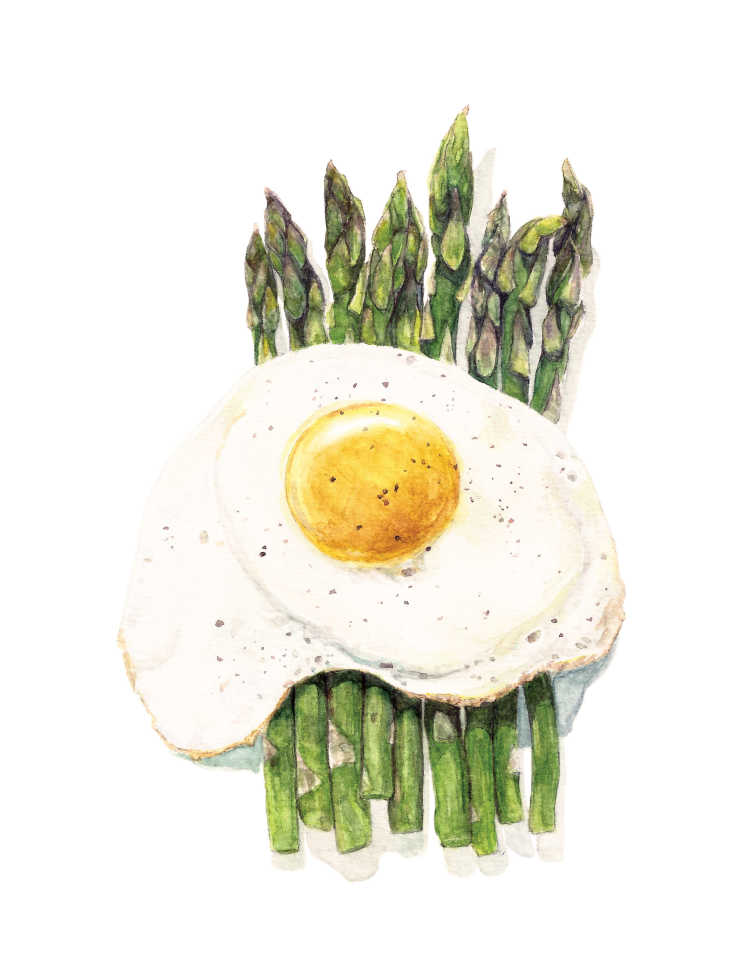 Asparagus-And-Egg