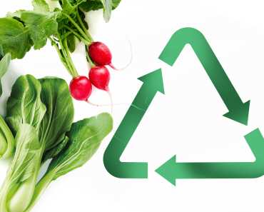 live and eat sustainably: tips for creating less food waste