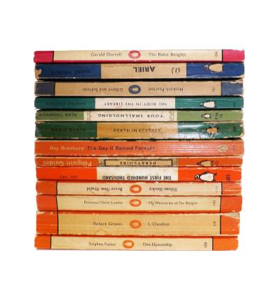 Block Penguins (Vintage Books)