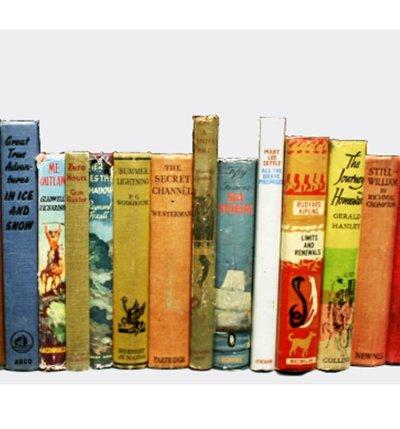 Mixed Hardback Pallet (Vintage Books)