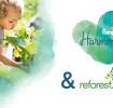 Harmonie Reforestation