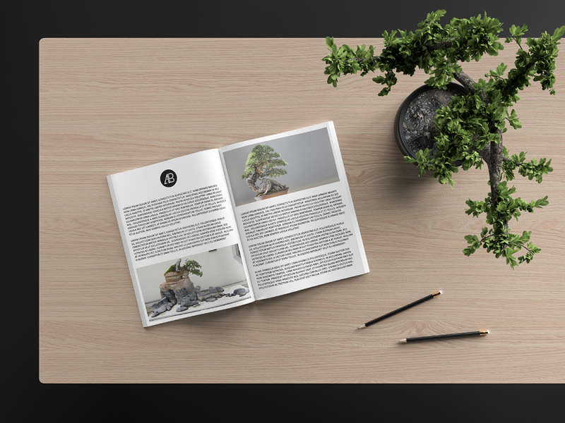 Modern Catalog Magazine Mockup by Anthony Boyd Graphics