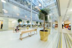 CIMA Atrium Space With Planters