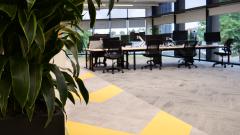 ARCO - Desks with plant