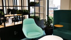 ARCO  - Green chairs