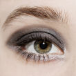 japonesque-velvet-touch-eyeshadow-quad-grey
