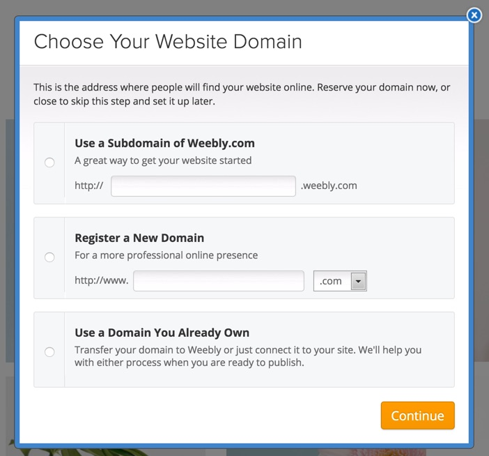 first-steps-choose-domain