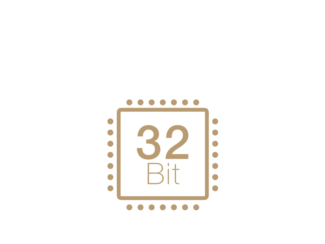 32-Bit chip
