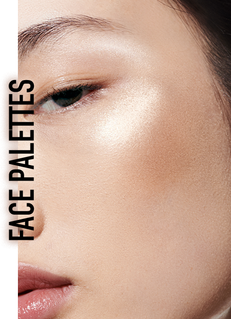 Dior Backstage About the Brand Content Face Palettes