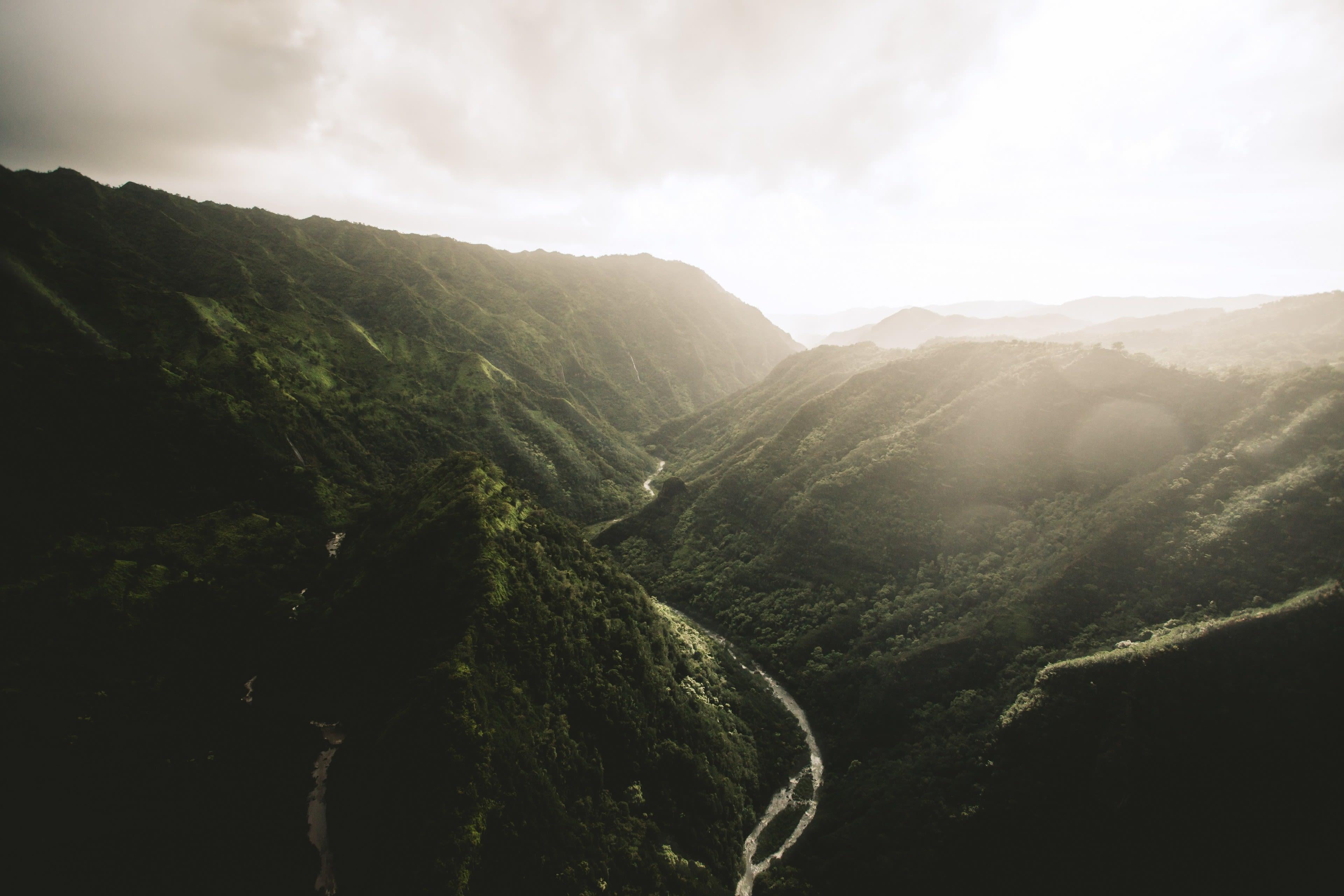 Aloha (Photo 0)