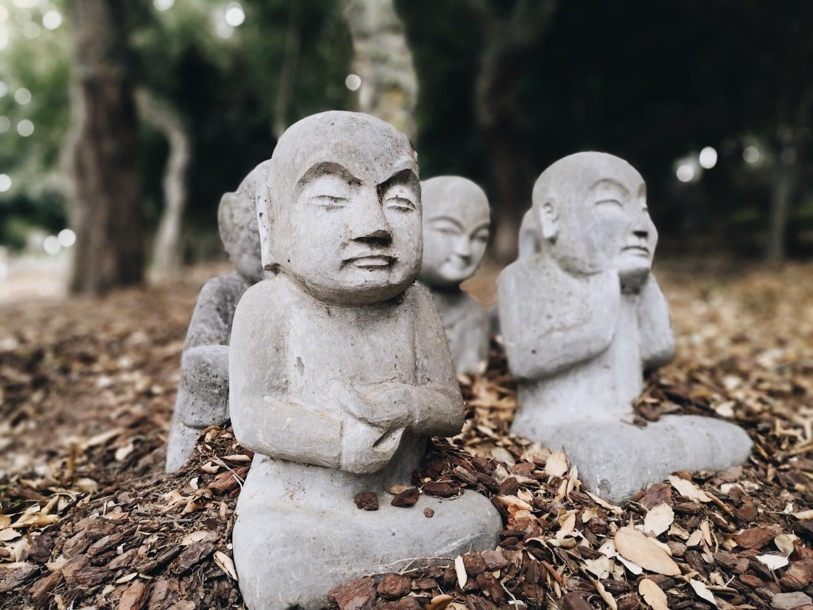 Buddha Eden Quinta dos Loridos 2