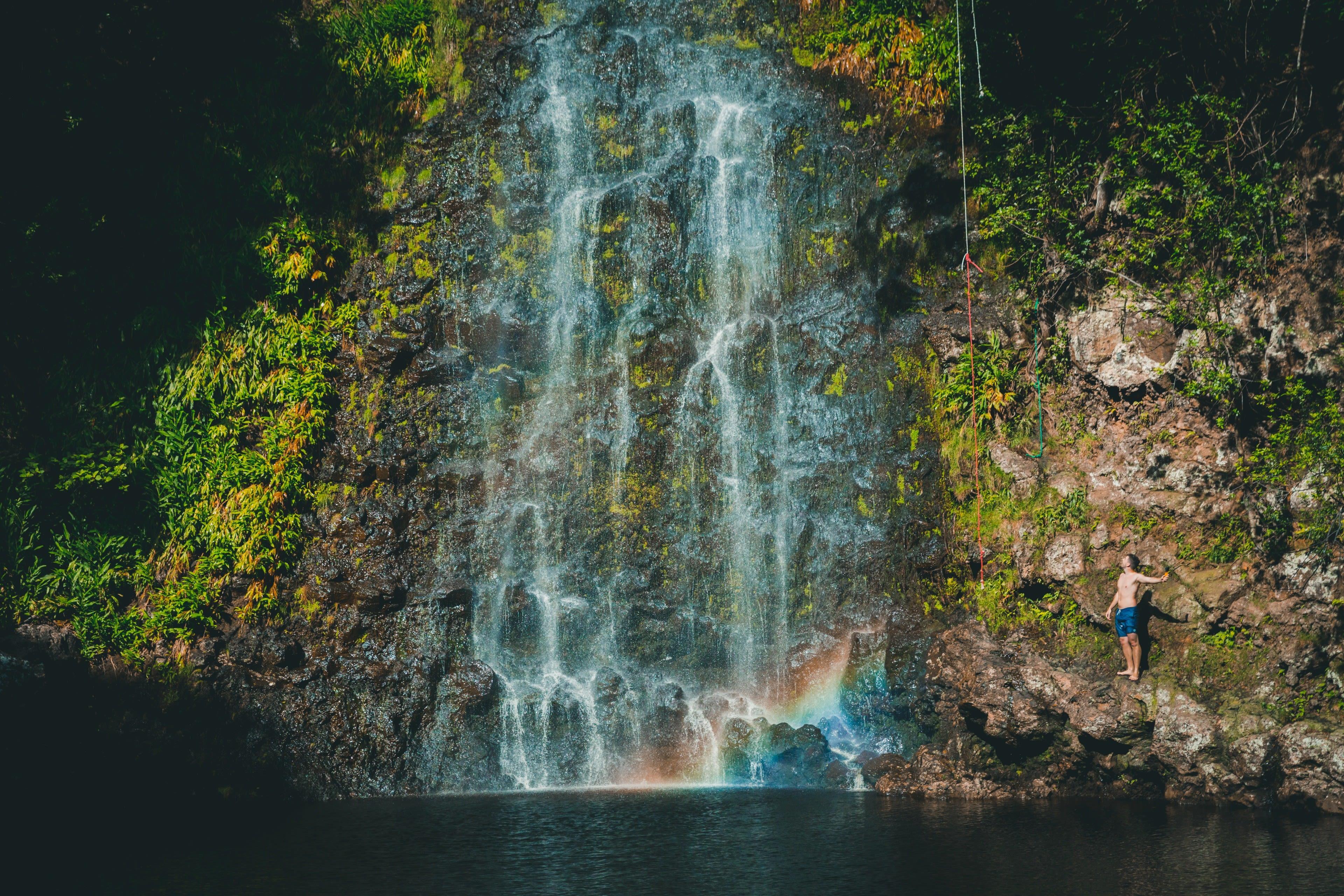 Aloha (Photo 1)