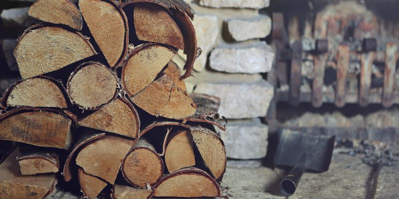 firewood-storage-tips-for-pest-prevention