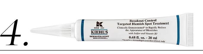 winter-skin wk2 web product-image 4