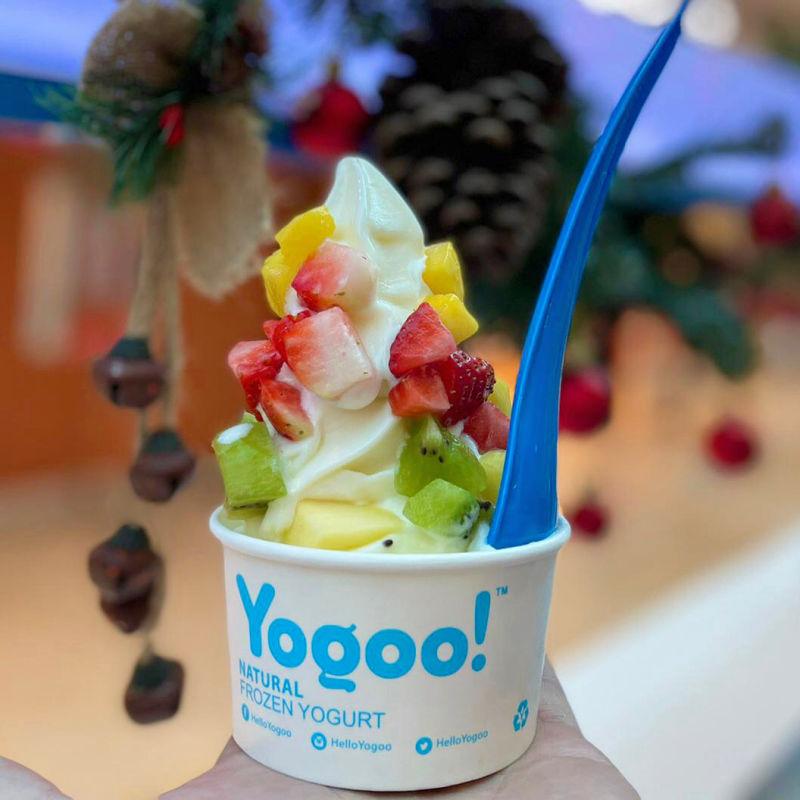 yogoo-asset-1