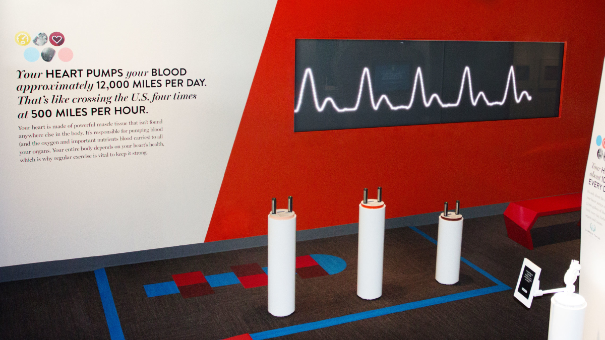 The Heartbeat Wall in-situ at the museum.