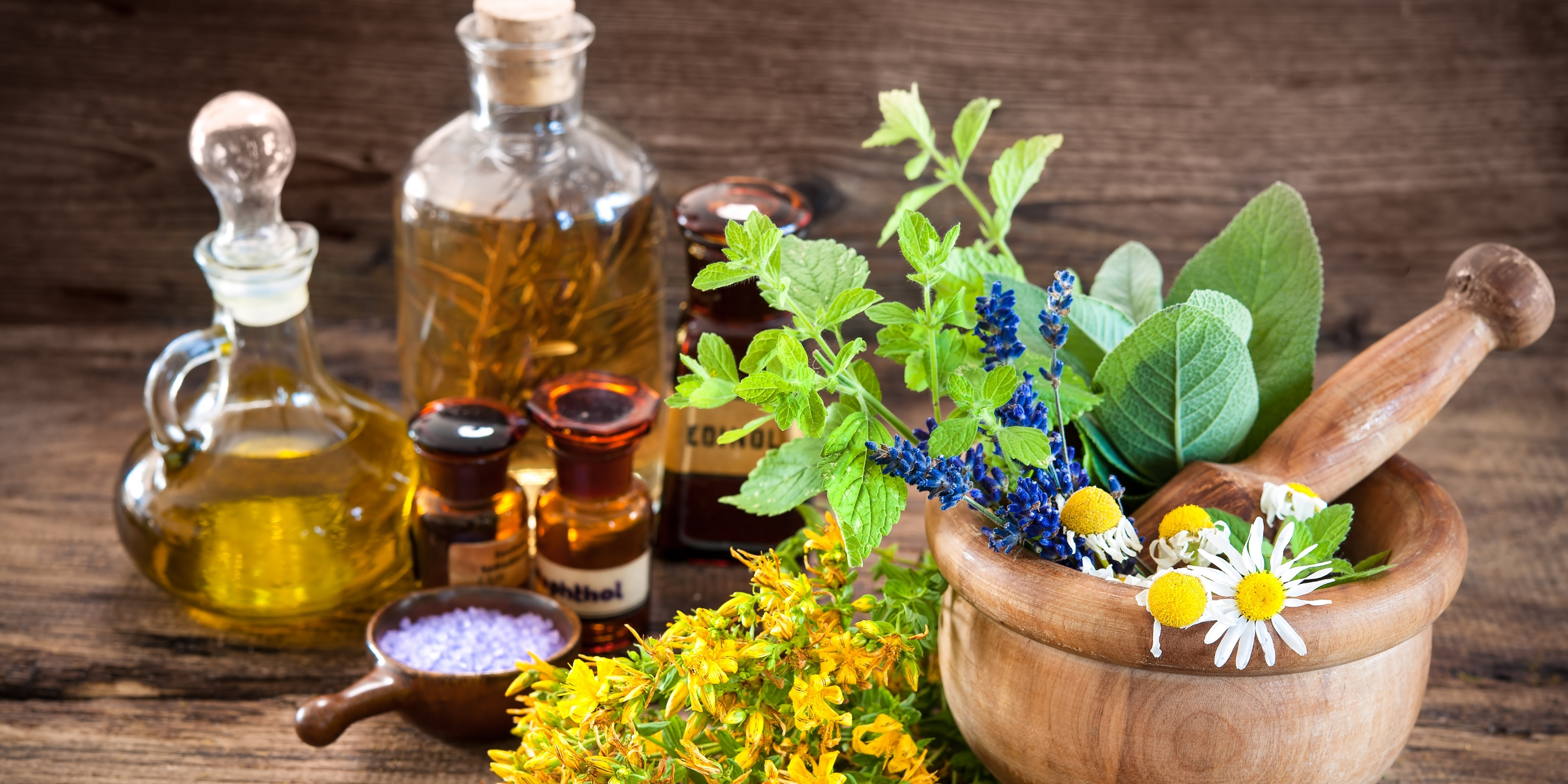 Annual Congress & Exhibition on Traditional and Alternative Medicine