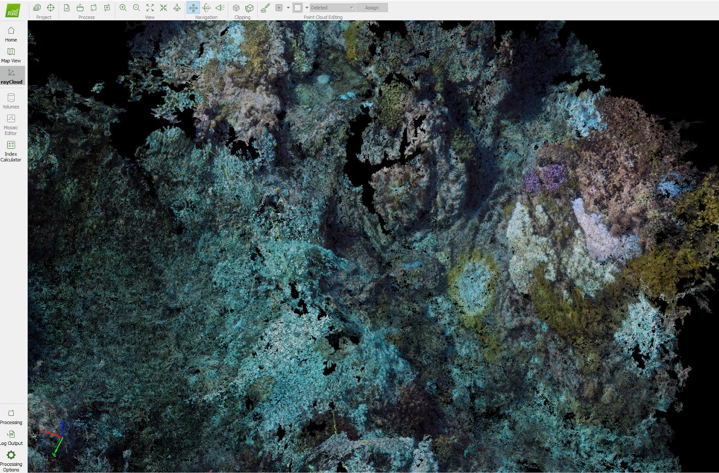 3D point cloud of the reefs in Pix4Dmapper rayCloud