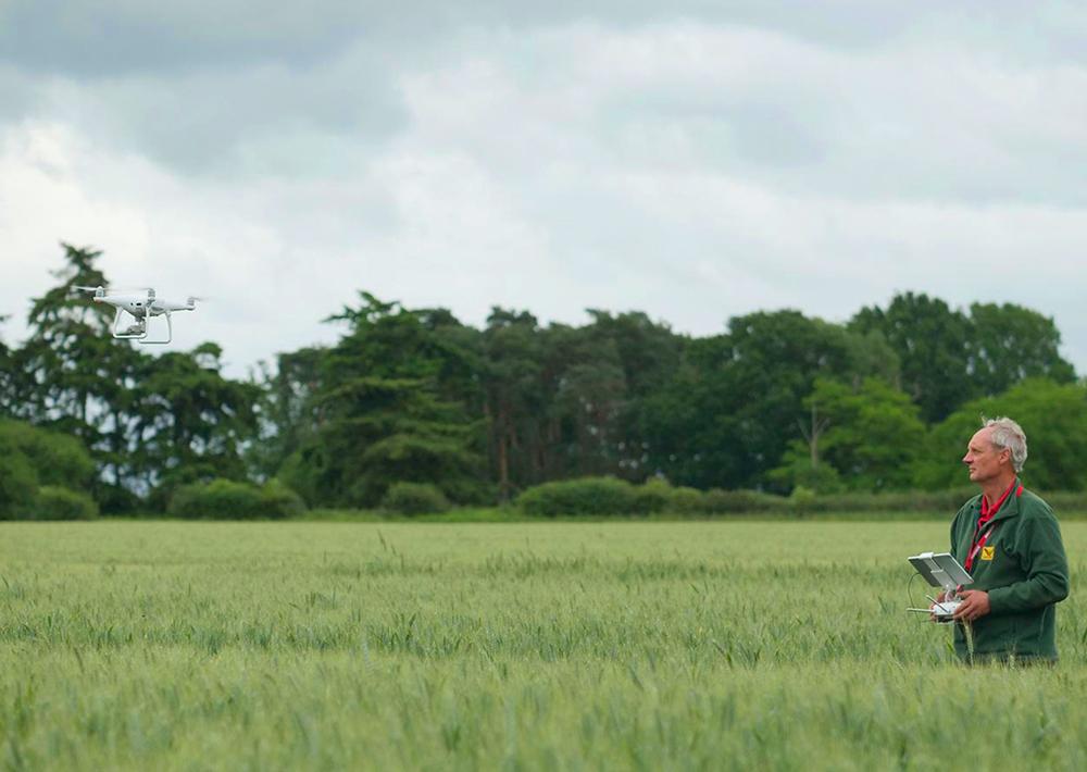 Landwirt befliegt ein Feld mit einer DJI Phantom-Drohne