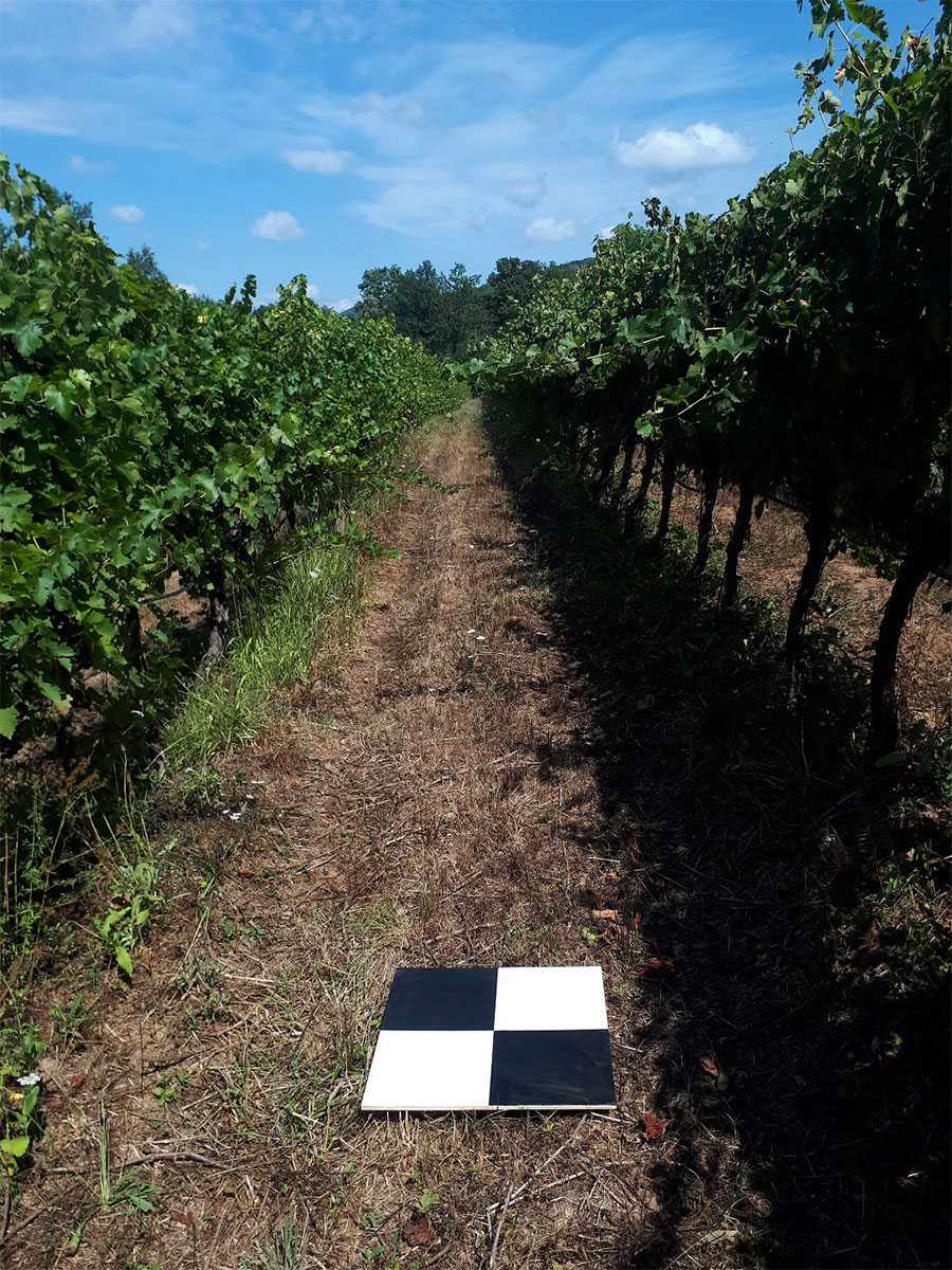 GCP used for the drone flight over the vineyard in Bolgheri