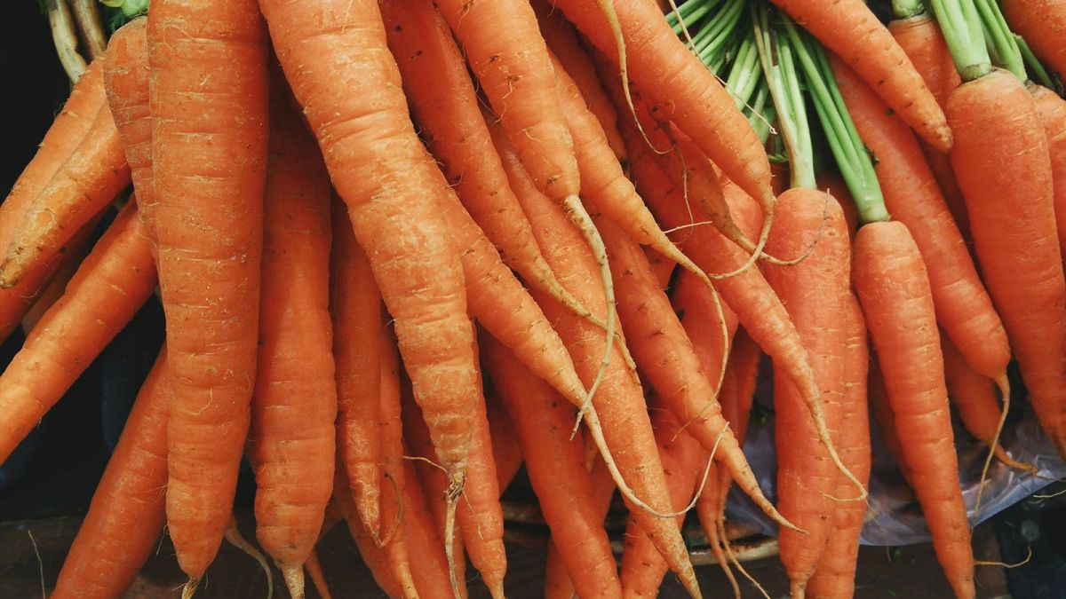 Pix4D-agriculture-drone-mapping-carrots