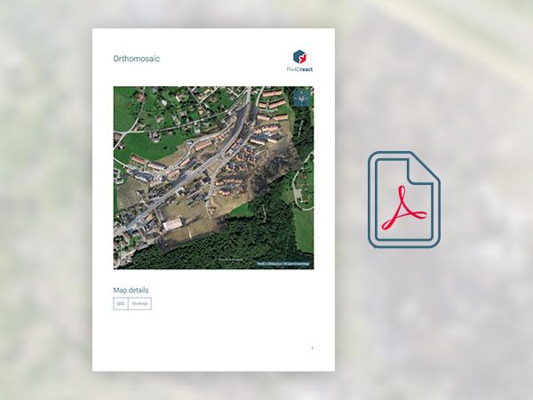 export pdf report