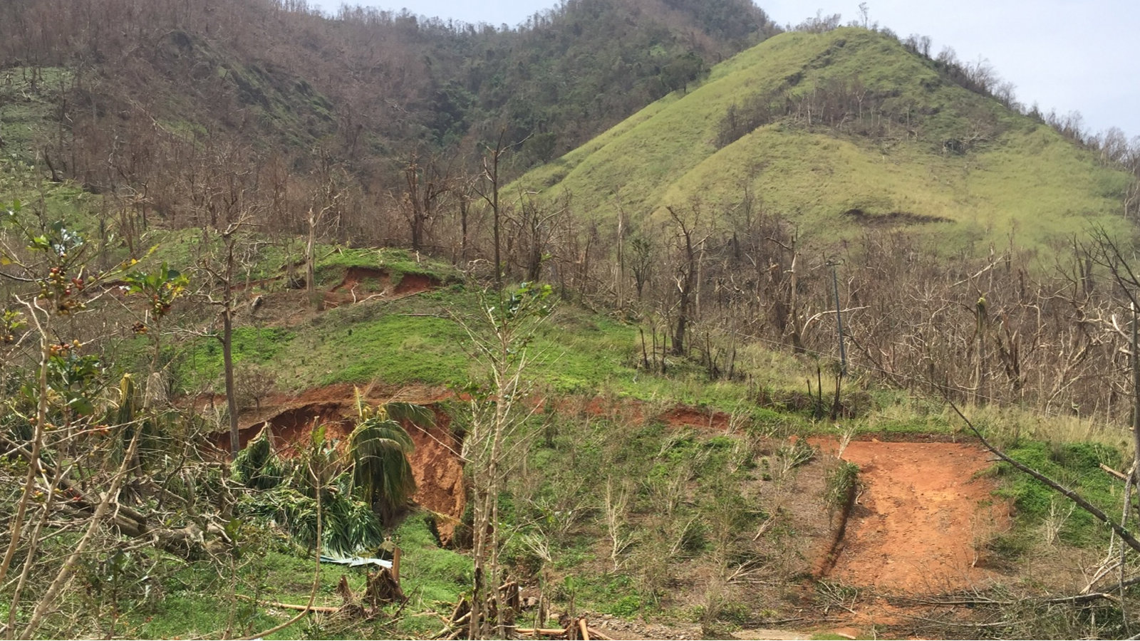 Pix4D Agriculture usecase drones climatechange hurricane Maria damage