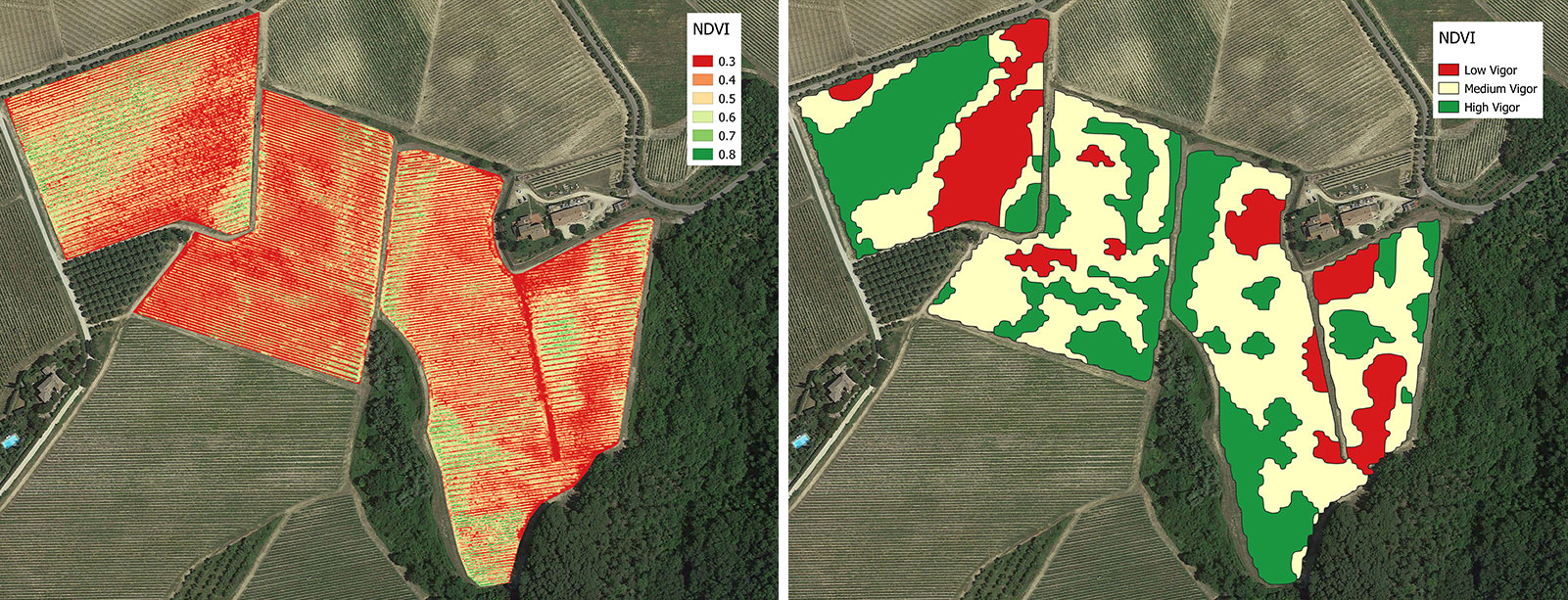 Full vineyard vigor map (NDVI), vineyard zonation map in 3 vigor classes
