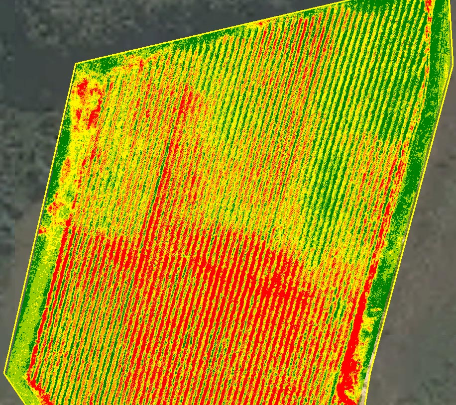 Aerial image of a farm field through a near infrared sensor