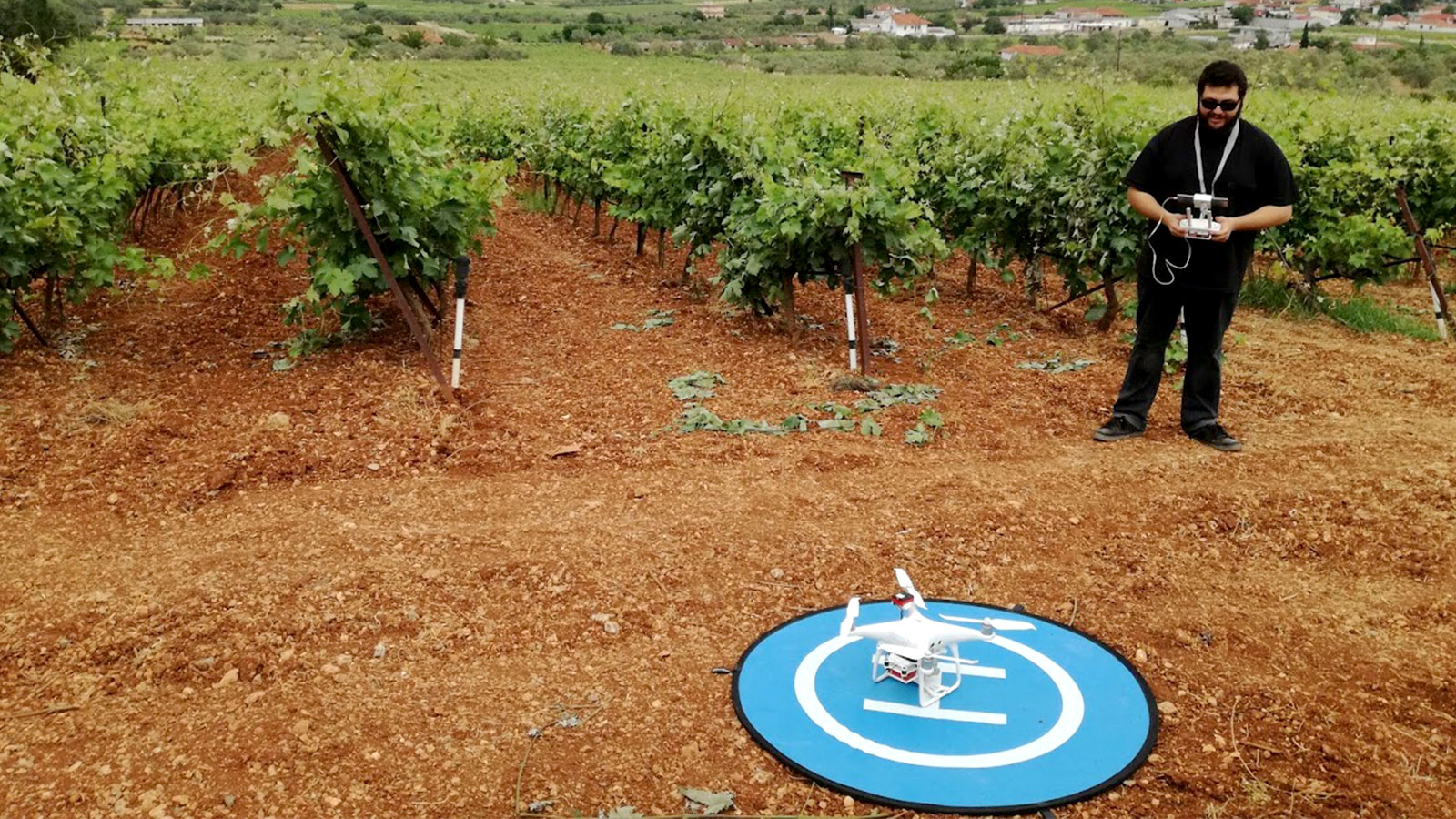 Mapping vineyards as a part of the BigDataGrapes project