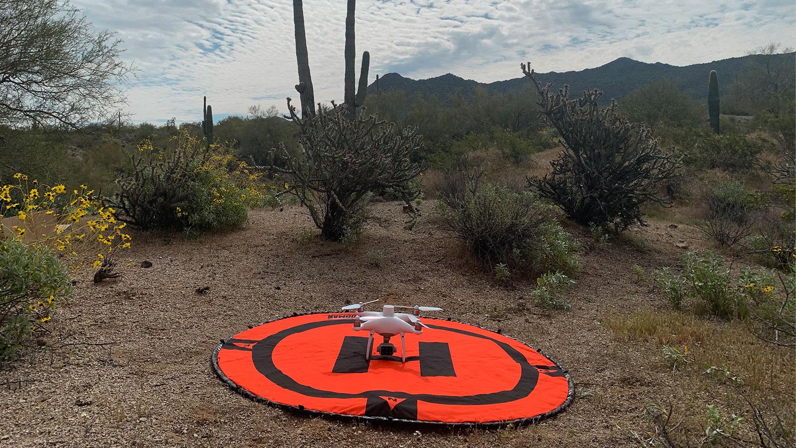 Taking off in the desert