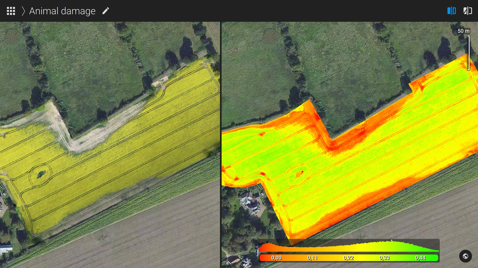 Pix4Dfields drone mapping for oilseed rape in England