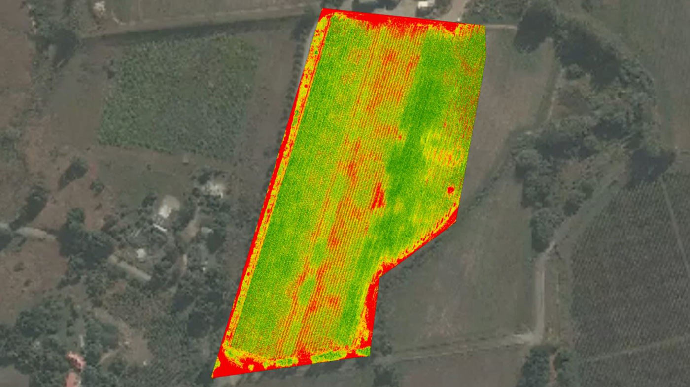 Pix4D agriculture drone mapping for hops in New Zealand